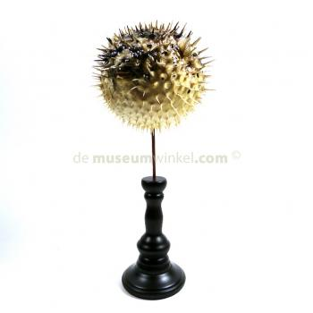Porcupinefish on wooden base
