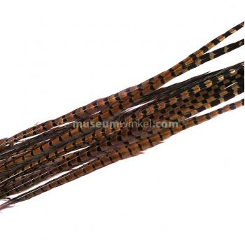 Pheasant feathers 45 cm - 50 cm (5 pieces)