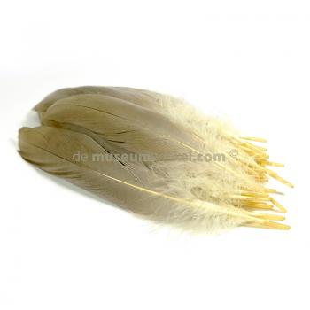 Crown crane feather  (per 50) 25 cm