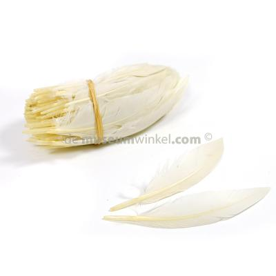 Chicken feathers 10 cm (100x)