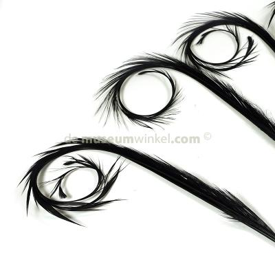 Curl spring feathers (5x)