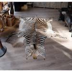 Hartmanns Zebra huid