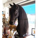 Friesian horse as chess piece