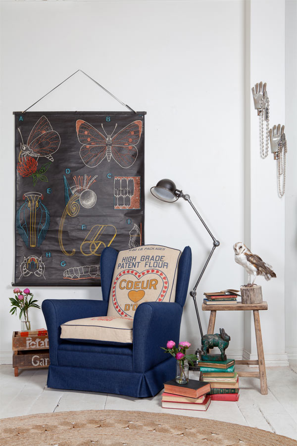 Attractive interior décor with mounted birds