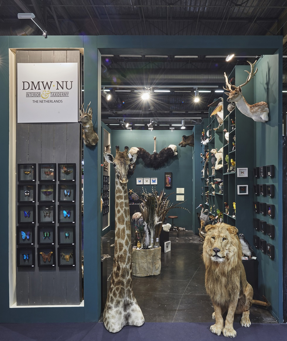 Taxidermy & Interior: Maison & Objet